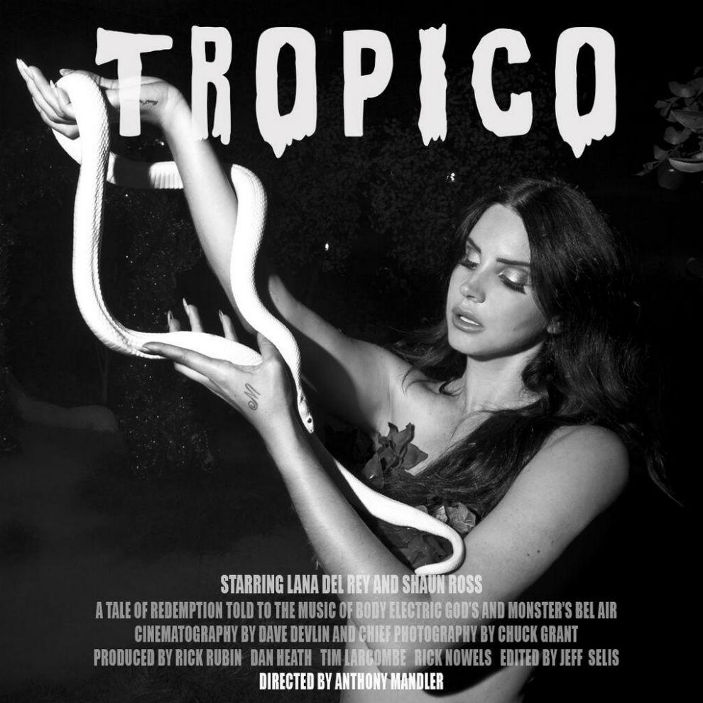 Tropico snake