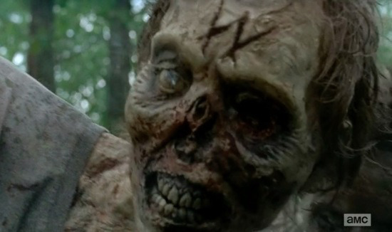 whisperers-walking-dead