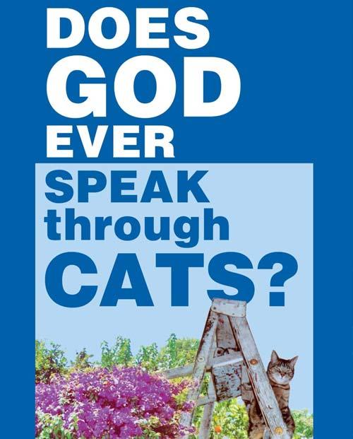 dios-hablar-gatos