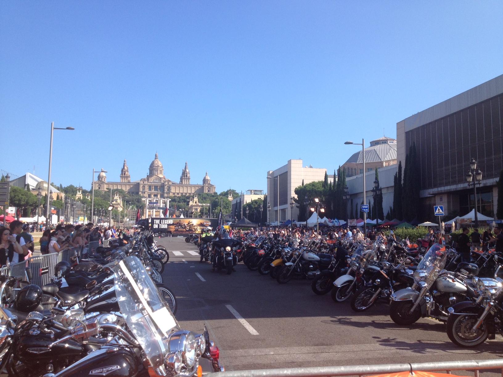 Todas las Harleys estacionadas