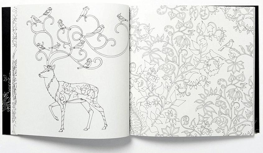 Secret Garden\', el Libro para Colorear de Johanna Basford - Silenzine