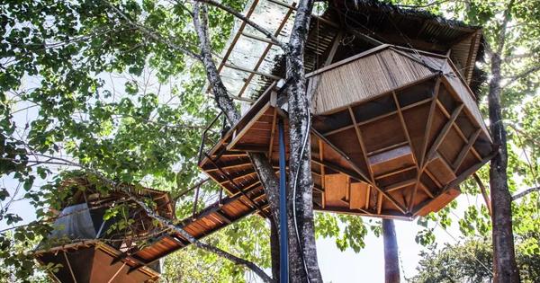 casa ewok costarica