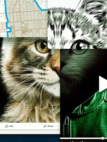 asesino gatos documentales